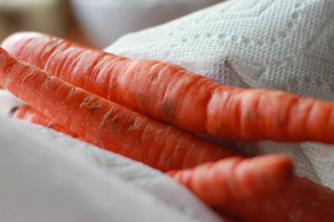 carrots2 (1 of 1)